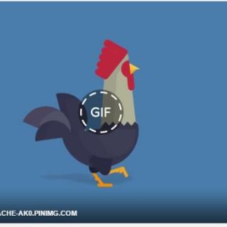 طريقة وضع صورة متحركة GIF علي الفيس بوك