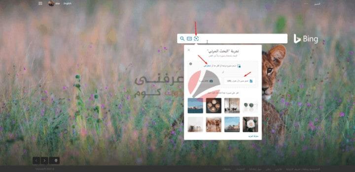 أفضل مواقع البحث بالصور على الإنترنت بدل النص 5