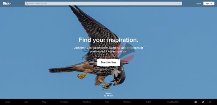 أفضل مواقع البحث بالصور على الإنترنت بدل النص 9