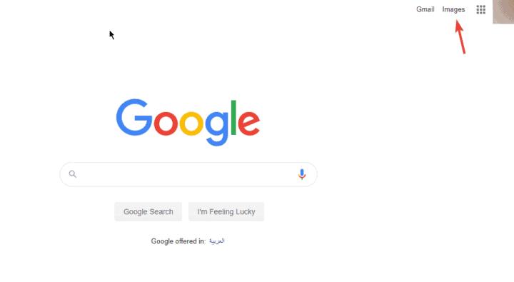 بحث الصور في جوجل