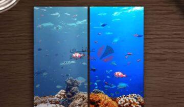 الفرق بين شاشات AMOLED و IPS ولماذا نفضل الأولى؟ 3